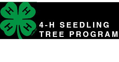 4-H Trees